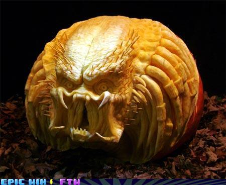 awesome photos -This Pumpkin Could Kill You